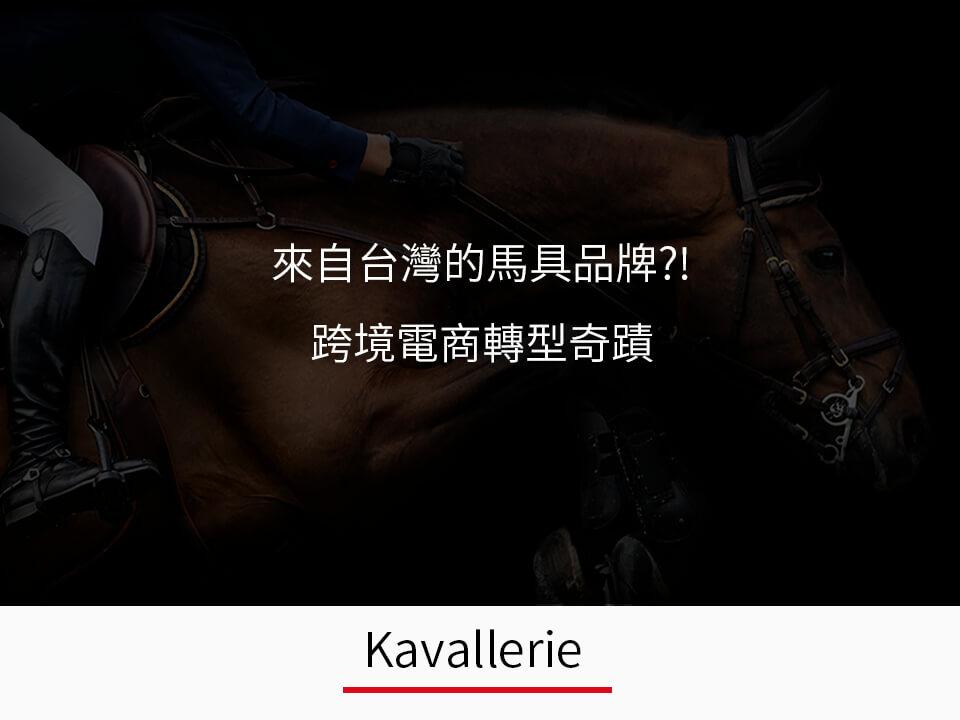 casestudy-Kavallerie